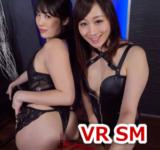 VR+1D SM
